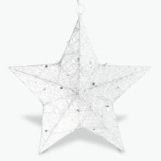 White Christmas stjerne