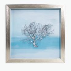Silver Tree bilde