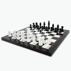 Chess sjakkbrett m/brikker