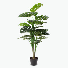 Flora Vindusblad H: 120 cm