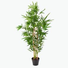 Flora bambu