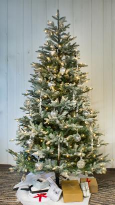 Julgran med snö 215 cm
